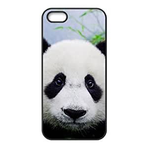 QNMLGB Hard Plastic of Panda Cover Phone Case For iPhone 5,5S [Pattern-1]