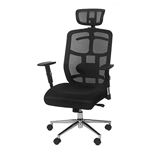 TOPSKY Mesh Computer Office Chair Ergonomic Design Chair Skeletal Back Synchronous Mechanism(Black) Hanger function