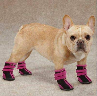 FidgetGear High Top Neoprene Dog Boot Brites Boots Snow Booties Paw Protection Winter Color Size by FidgetGear