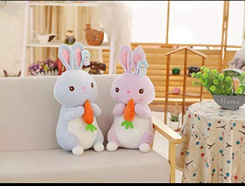 A Little Swag Cute Set of 2 Rabbit Bunny with Carrot Soft Animal Figure Plush Stuffed Toy for Kids.(25 cm)