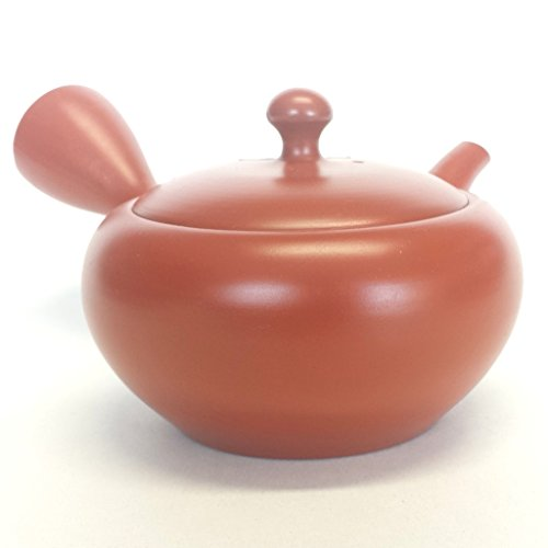 Japanese Teapot Tokoname Kyusu / Studio Domisen / special bottom filter / 8.5 fl oz (250 ml)