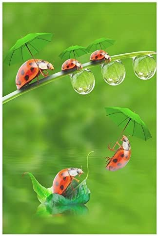 Amazon Com Usophia Little Ladybug With Umbrella Long Polyester Garden Flag Banner 12 X 18 Inch Double Sided For Garden And Home Decorations Garden Outdoor