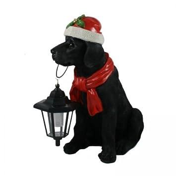 Weihnachtsdeko Hund.Amazon De Unbekannt Weihnachtsdeko Labrador Mit Solarlampe Deko