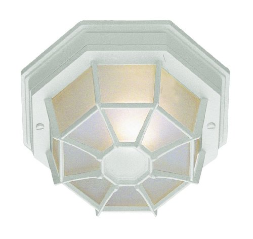 Trans Globe Lighting 40582 WH Outdoor Benkert 5