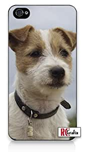 Stout & Serious Jack Russell Puppy Dog - Very Smart Apple iPhone 5C Quality Hard Snap On Case for iPhone 5c/5C - AT&T Sprint Verizon - White Case