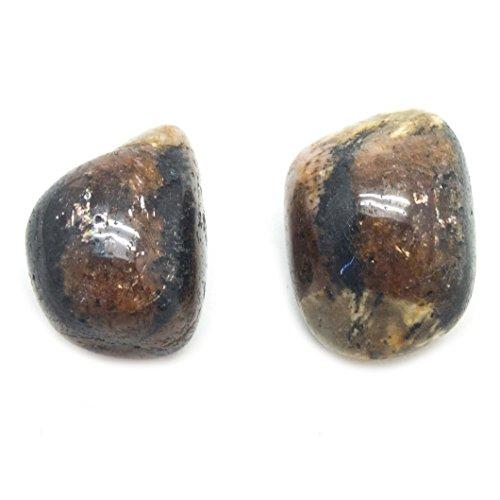 Chiastolite Tumbled Pair (Large)