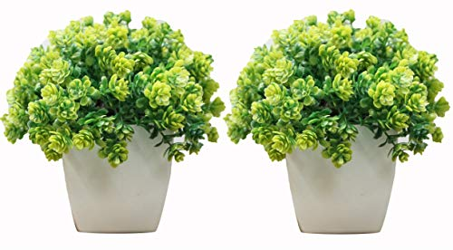 Artificial Bonsai Plants Potted Plastic Green Grass Set of 2 for Home Decor