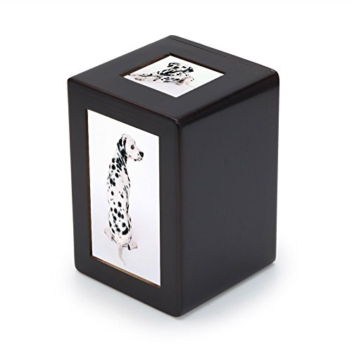 Box Pet Urn - 9