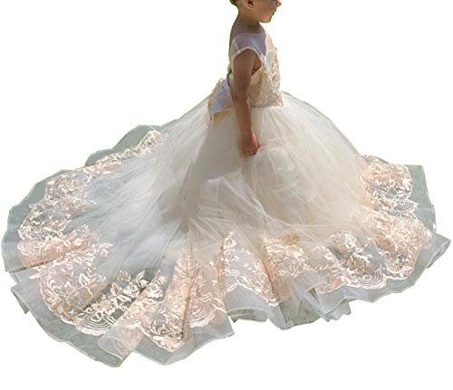 gsunmmw Gold Lace Flower Girl Dresses for Wedding Beaded Pageant Ball Gown First Communion Dress for Girls GS098 -