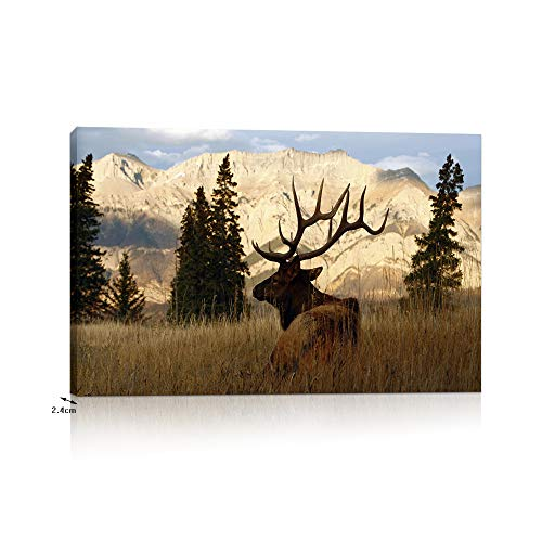 VVOVV Wall Decor Deer Pictures Elk Wall Art Wildlife Animal Painting Art Print on Canvas Stretched Framed Ready to Hang ()