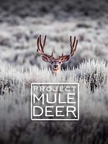 Project Mule Deer