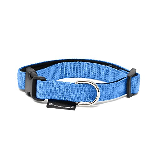 All Pet Solutions Dog Puppy Soft Padded Durable Strong Adjustable Collar, Small, Blue