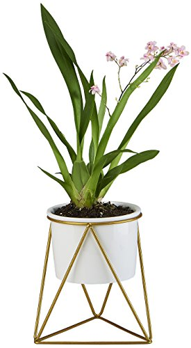 Planter Pot Indoor, Flowerplus 4.33 Inch White Ceramic Medium Succulent Cactus Flower Plant Round Bowl with Iron Rack Holder and Plants Sign for Indoors Outdoor Home Garden Kitchen Decor (Succulent Garden)