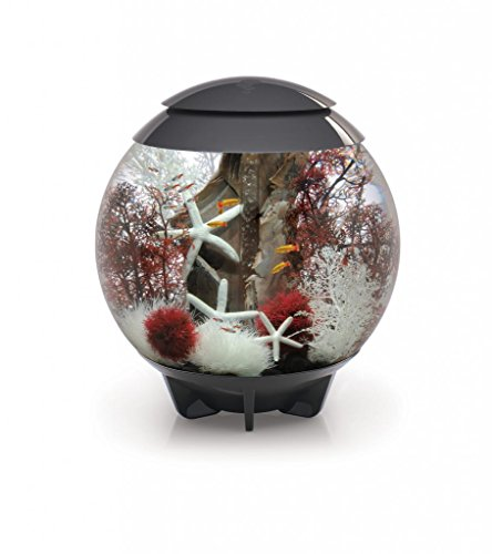 biOrb HALO 60 Aquarium with Moonlight LED Light - 16 Gallon, Grey
