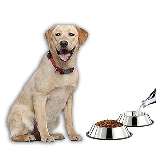 TUDIGONG 2x 32Oz Stainless Steel Big Dog Bowls with Non-slip rubber
