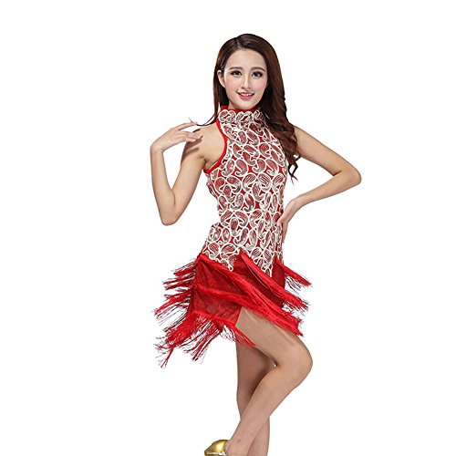 [Jlong Women Latin Salsa Tassle Sequins Dress Ballroom Competition Dancewear] (Latin Costumes Dresses)