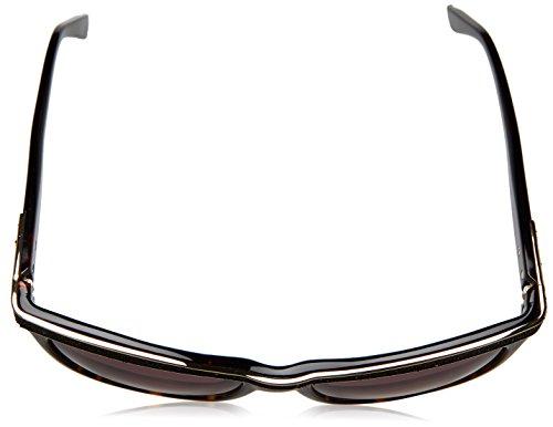 e99a3bb3d8a Swarovski Ella SW75 53F (Dark Havana - Glitter Black with Brown Gradient  lenses) at Amazon Men s Clothing store