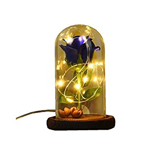 Lookvv Beauty and The Beast Preserved Artificial Silk Rose and Led Light in Glass Dome on a Wooden Base Gift for Home Decor Valentine's Day Wedding Anniversary Birthday 13