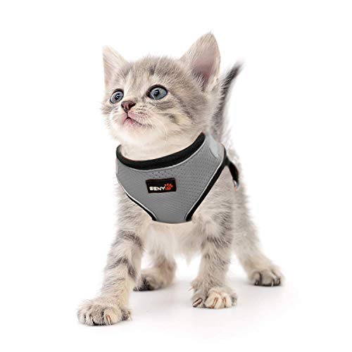 SENYEPETS Breathable Mesh Cat Harness and Leash with Durable D Ring and Metal Lock System, Escape Proof Vest with Adjustable Straps for Puppy Kitty Rabbit. (M, Gray) (Cat Strap Gray)