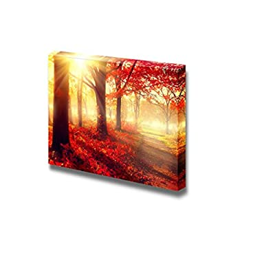 Canvas Prints Wall Art - Beautiful Scene/Landscape Misty Old Autumn Forest | Modern Wall Decor/Home Decoration Stretched Gallery Canvas Wrap Giclee Print & Ready to Hang - 16