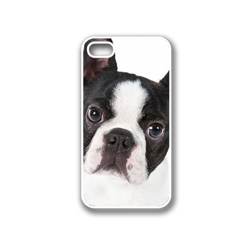 Cute Boston Terrier Dog Portrait - Protective Designer WHITE Case - Fits Apple iPhone 4 / 4S / 4G