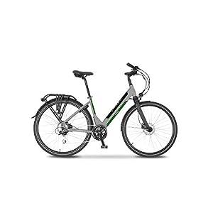 Argento Bicicletta elettrica Omega Città, Unisex Adulto, Grigio e Verde, taglia unica