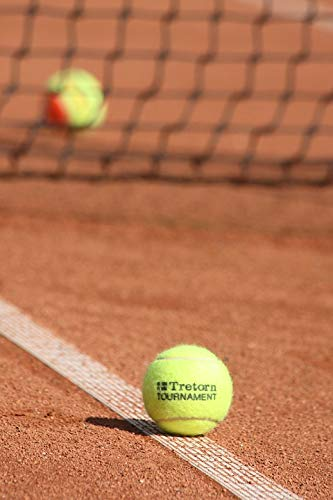 Amazon com: Photography Poster - Tennis, Ball, Game, Sports