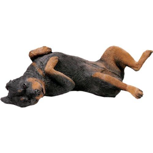(Sandicast Original Size Rottweiler Sculpture - Lying Back)