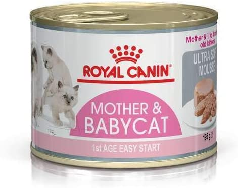 Royal Canin - Royal Canin Feline Babycat Instinctive Mousse - 1374 - 12 x 195 Grs. (Lata) Pack Ahorro