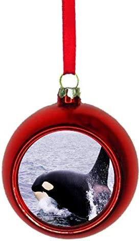 Amazon Com Jacks Outlet Orca Killer Whale Red Bauble Christmas Ornament Ball Home Kitchen