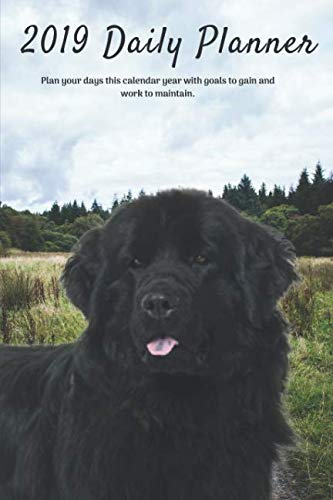 2019-Daily-Planner-Plan-your-days-this-calendar-year-with-goals-to-gain-and-work-to-maintain-Cute-Newfoundland-Dog-Appointment-Book-for-Hourly–Notes-To-Do-List-6-x-9-in-152-x-22-cm