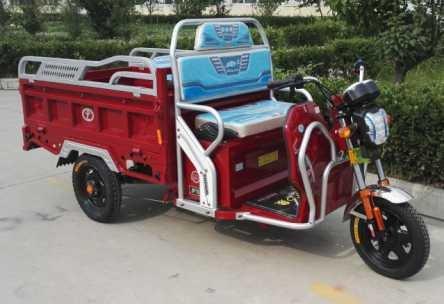 Electric Three Wheel Motor Vehicle