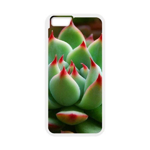 "SYYCH Phone case Of Succulent Plants Cover Case For iPhone 6 (4.7"")"
