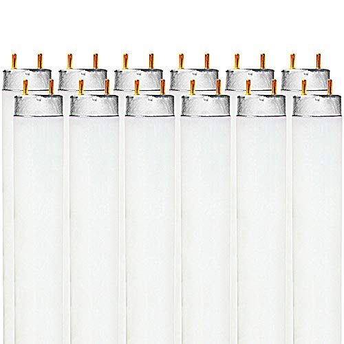 Luxrite F32T8/765 32W 48 Inch T8 Fluorescent Tube Light Bulb, 6500K Daylight White, 2650 Lumens, G13 Medium Bi-Pin Base, LR20735, 12-Pack