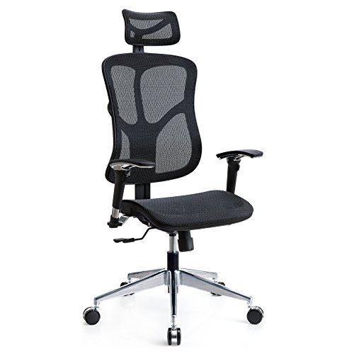 Poly and Bark Valencia Ergonomic Office Chair in Mesh, Black by Poly and Bark