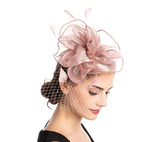 SAFERIN Fascinator Hat Feather Mesh Net Veil Party Hat Flower Derby Hat with Clip and Hairband for Women (TA2-Foral Mesh Pink) -