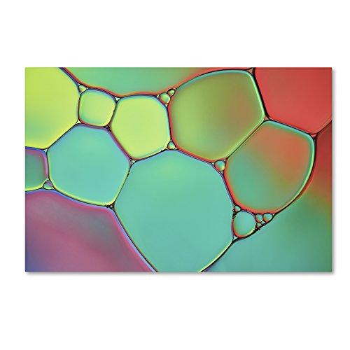 "Trademark Fine Art ALI1732-C3047GG Stained Glass III by Cora Niele, 30x47"" ,,"