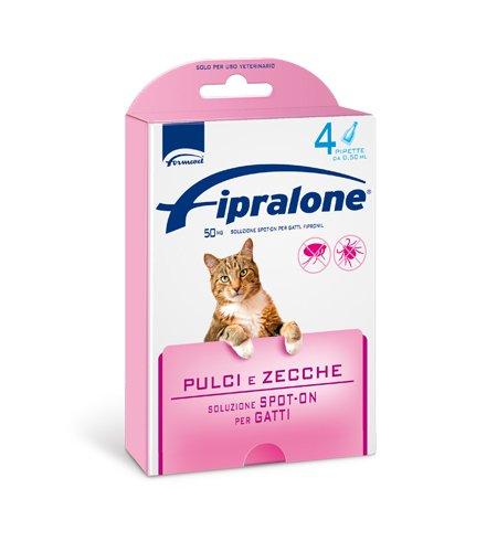 formevet - fipralone Spot On Gato 4 pipetas: Amazon.es ...