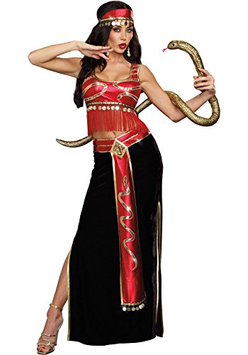 (Dreamgirl Women's The Snake Charmer Belly Dancer Costume, Multi,)