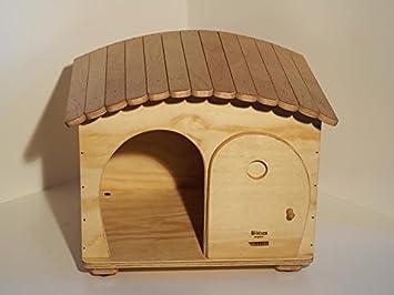 Novedad Blitzen, GinaBig Camping Indoor, Indoor Caseta para gatos de Grossa Talla y perros de talla pequeña.: Amazon.es: Jardín