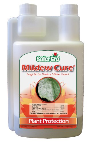 Safer Gro Mildew Cure, Organic Fungicide, 16 oz Concentrate