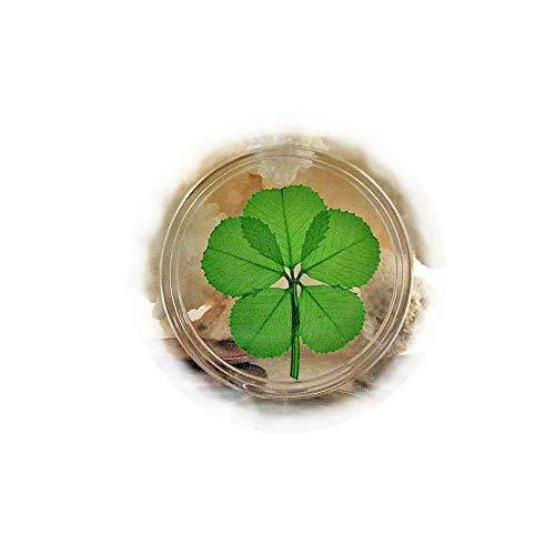 - Clovers Online Genuine 5 Leaf Clover Good Luck Pocket Token Coin