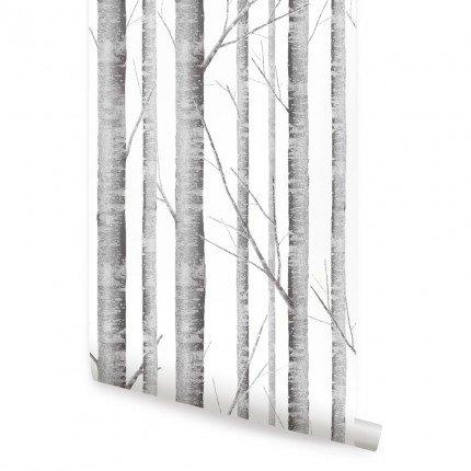 2' Birch (Birch Tree Temporary Wallpaper - 2ft x 4 ft - Single)