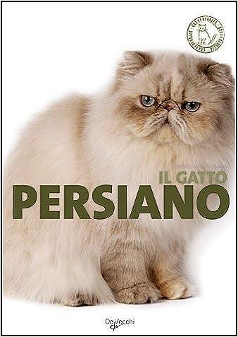 Amazonit Il Gatto Persiano Mariolina Cappelletti Libri