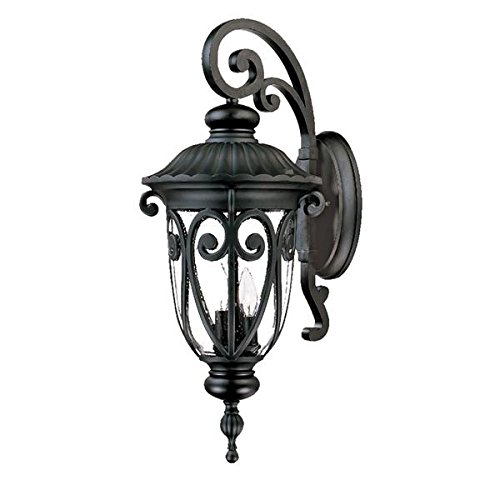 Acclaim 2122BK Naples Collection 3-Light Wall Mount Outdoor Light Fixture, Matte Black - Naples Three Light