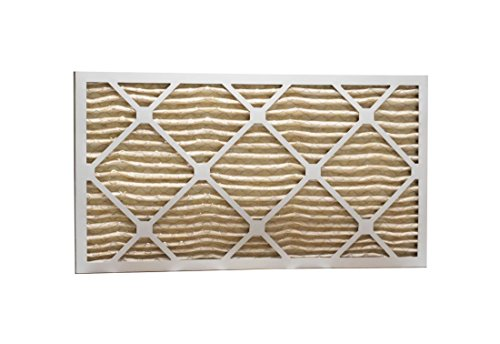 Eco-Aire P15S.010821 MERV 11 Pleated Air Filter, 8 x 21 x 1""