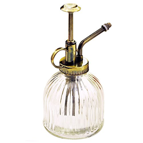 Leagway Glass Watering Spray Bottle, Vintage Style Spritzer With Bronze Plastic Top Pump One Hand Watering Can Spary Bottle, Decorative Plant Atomizer Mister for Indoor Potted Plants Flowers (Clear) by Leagway