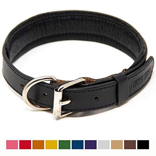Logical Leather Padded Dog Collar - Best Full Grain Heavy Duty Genuine Leather Collar - Black - Medium