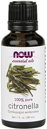NOW Solutions Citronella Essential Oil, 1-Ounce