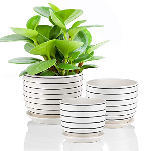 Ceramic Plant Pots Indoor Planters Flower Pots Garden Plants Pots with Saucers,Set of 3 (For Pots Indoor Sale Flower)